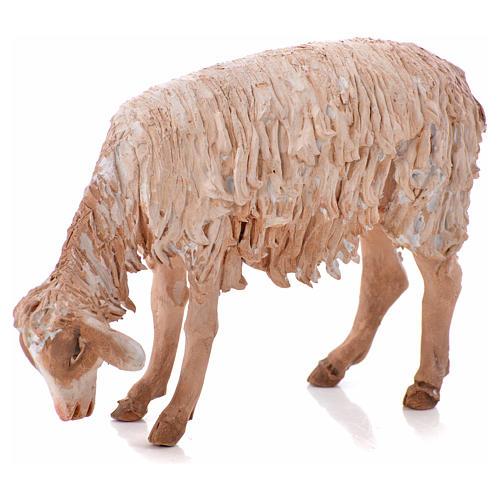 Ovelha em pé pastando 18 cm Angela Tripi terracota 6