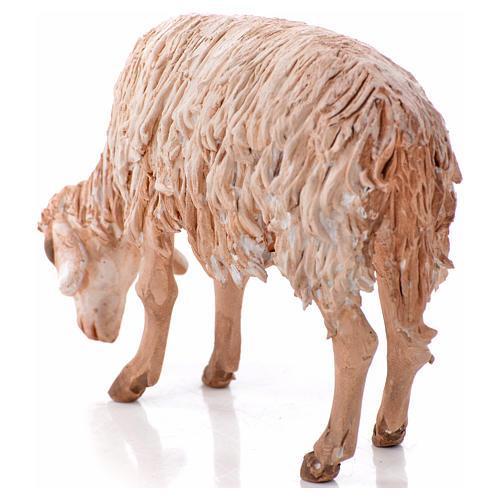 Ovelha em pé pastando 18 cm Angela Tripi terracota 7
