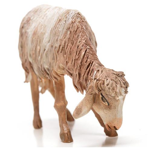Ovelha em pé pastando 18 cm Angela Tripi terracota 11