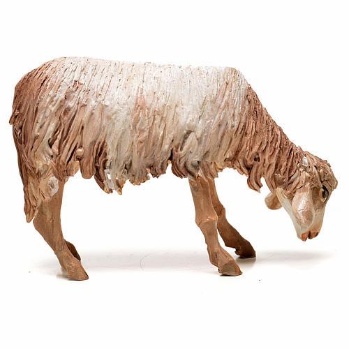 Ovelha em pé pastando 18 cm Angela Tripi terracota 2