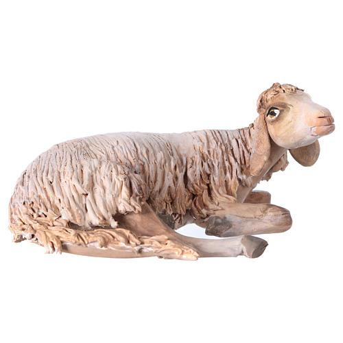 Nativity scene terracotta figurine, sheep 18cm, Angela Tripi 1