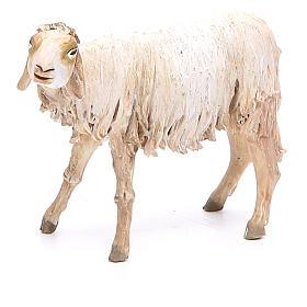 Nativity scene figurine, lying sheep 18cm, Angela Tripi s1