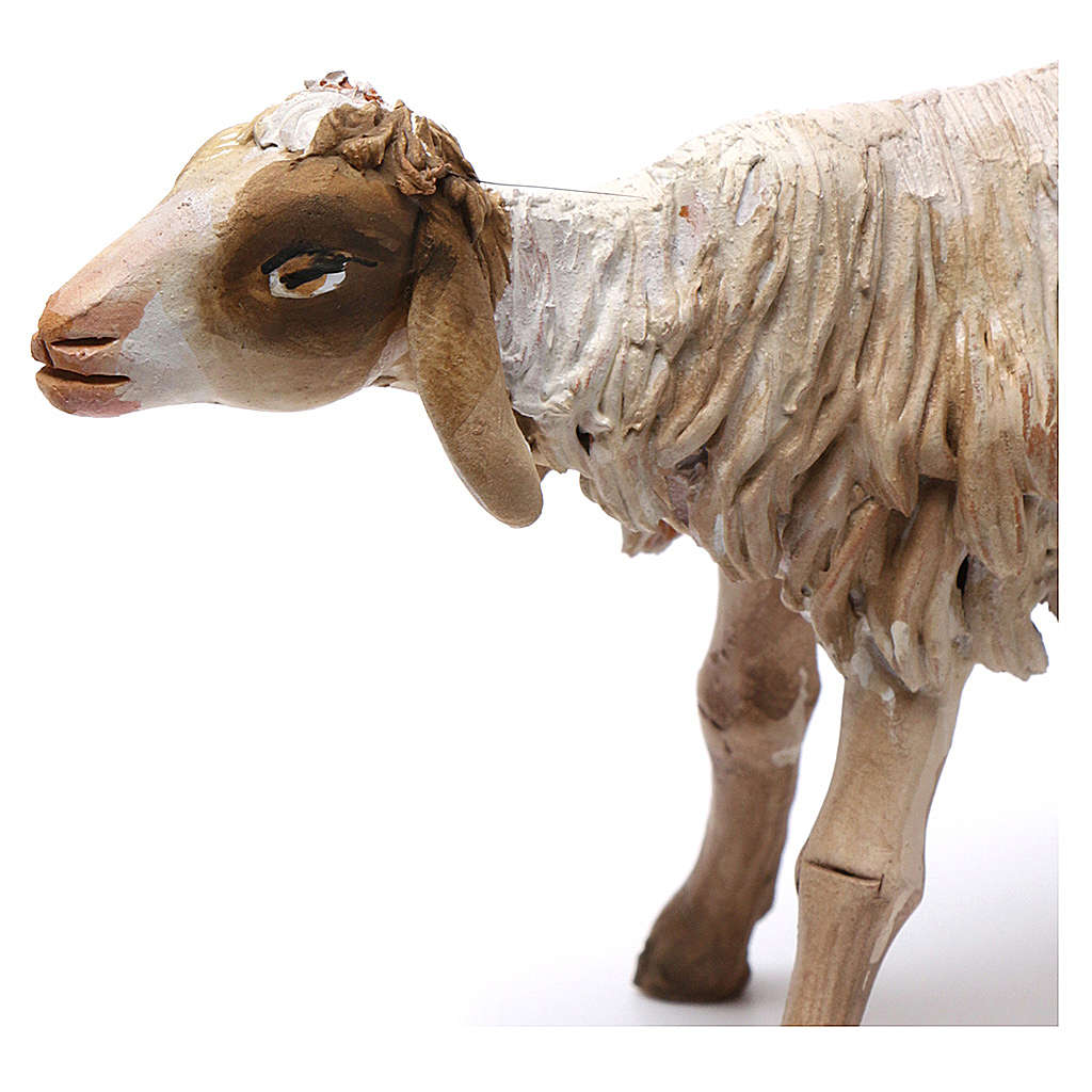 Pecora in piedi in terracotta 18 cm Angela Tripi 4