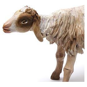 Pecora in piedi in terracotta 18 cm Angela Tripi s2