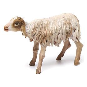 Nativity figurine, standing sheep, Angela Tripi 18cm s1