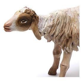Nativity figurine, standing sheep, Angela Tripi 18cm s2