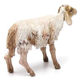 Nativity figurine, standing sheep, Angela Tripi 18cm s4