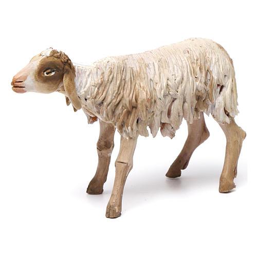 Nativity figurine, standing sheep, Angela Tripi 18cm 1