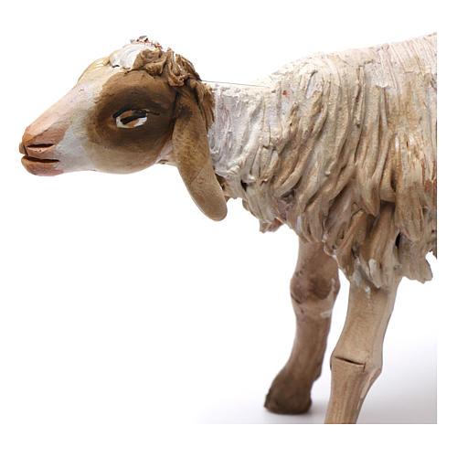 Nativity figurine, standing sheep, Angela Tripi 18cm 2