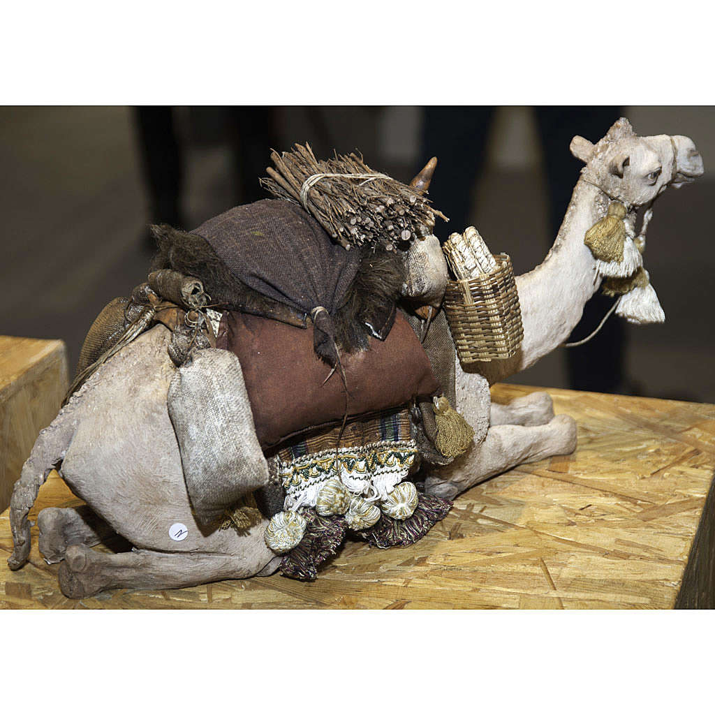 Camello Sentado Angela Tripi 30 cm 4