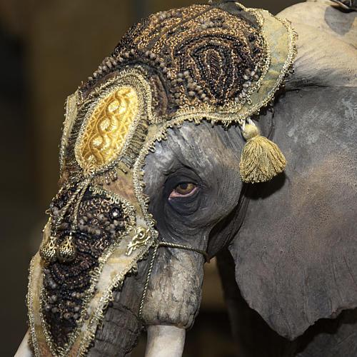 Roi Mage sur éléphant 30 cm Angela Tripi 3