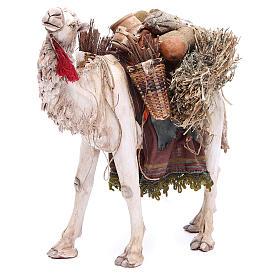 Camello Belén 18 cm Angela Tripi s1