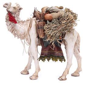Camello Belén 18 cm Angela Tripi s2