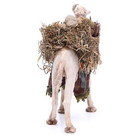 Camello Belén 18 cm Angela Tripi s3