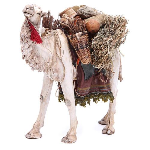 Camello Belén 18 cm Angela Tripi 1