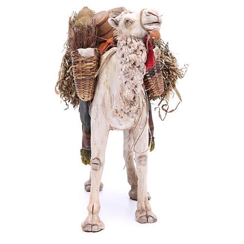Camello Belén 18 cm Angela Tripi 4