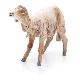 Sheep in terracotta 13cm Angela Tripi s4