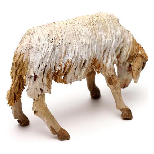 Mouton broutant 13cm crèche terre cuite Angela Tripi 3