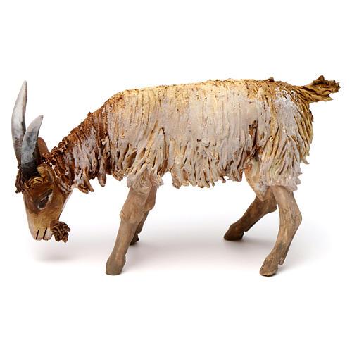Mouton 13cm crèche terre cuite Angela Tripi 1