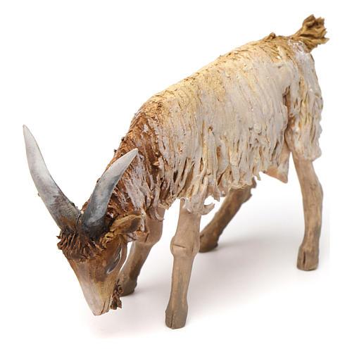 Mouton 13cm crèche terre cuite Angela Tripi 2