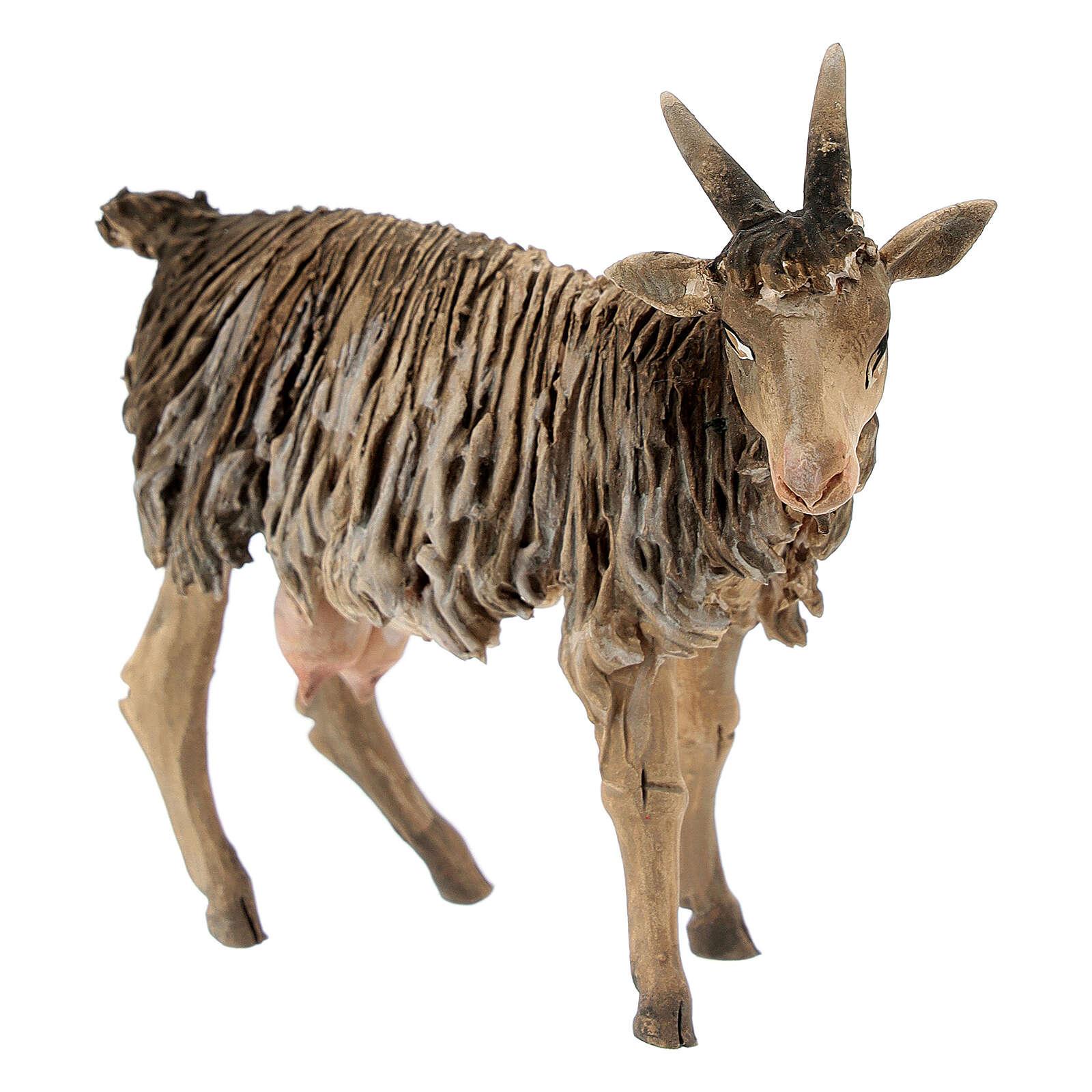 Chèvre 13cm crèche terre cuite Angela Tripi 4