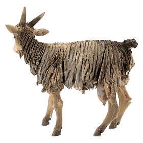 Chèvre 13cm crèche terre cuite Angela Tripi s4