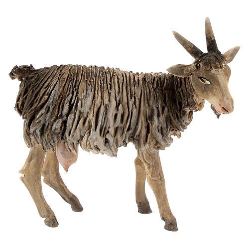 Chèvre 13cm crèche terre cuite Angela Tripi 1