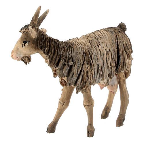 Chèvre 13cm crèche terre cuite Angela Tripi 3