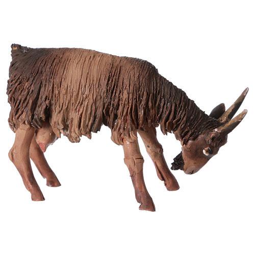 Cabra con cabeza baja Belén 13 cm Angela Tripi terracota 2
