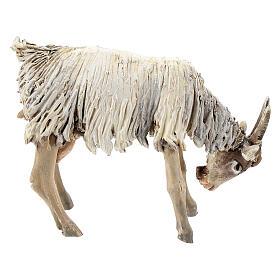 Chèvre broutant 13cm crèche terre cuite Angela Tripi s4