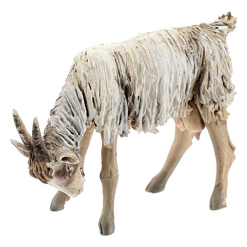 Chèvre broutant 13cm crèche terre cuite Angela Tripi 2