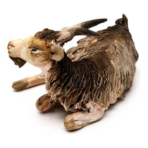 Chèvre couchée 13cm crèche terre cuite Angela Tripi 2