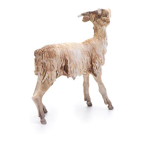 Cabra de pie Belén 13 cm Angela Tripi terracota 3