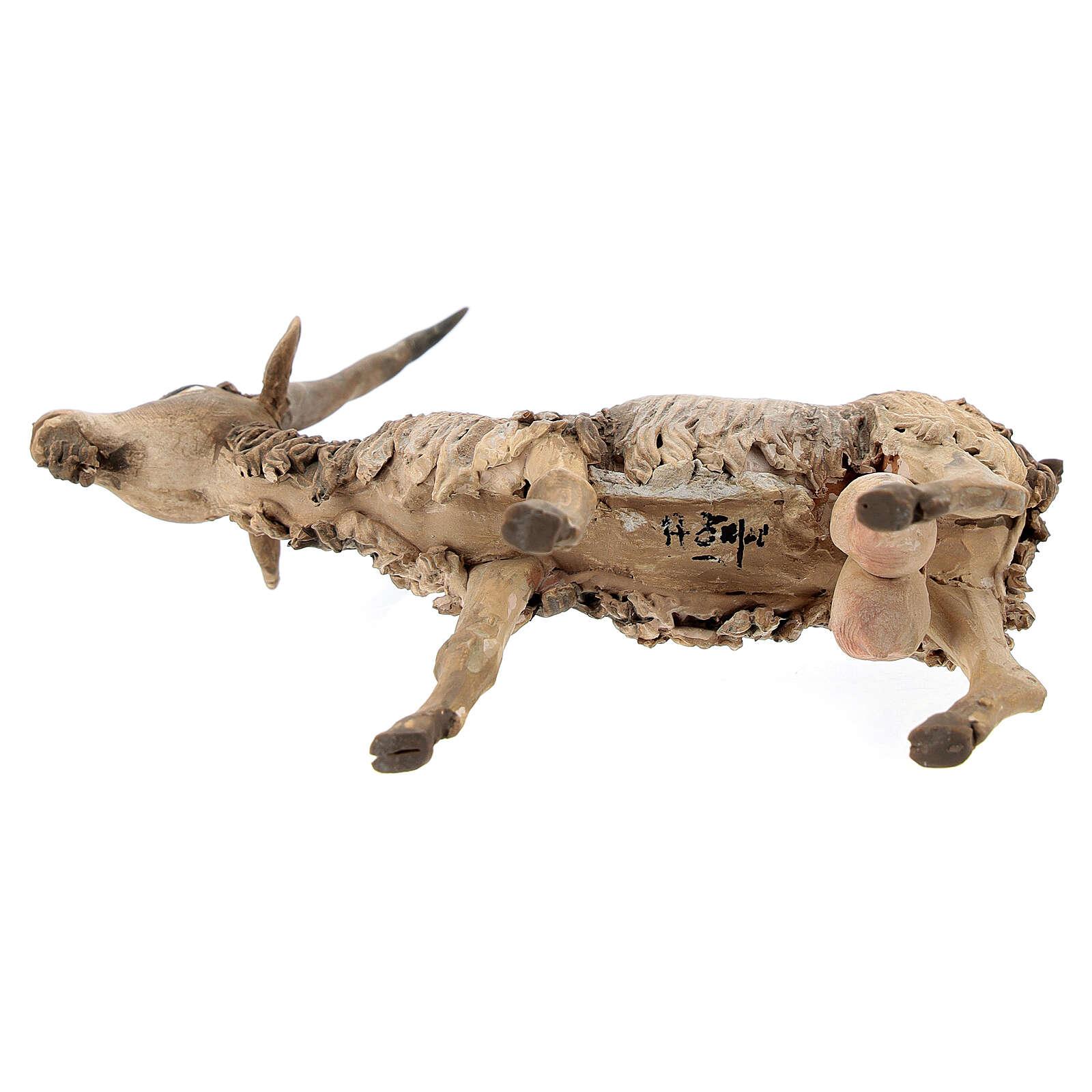 Cabra cabeza baja Belén 18 cm Angela Tripi terracota 4