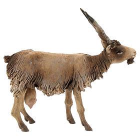 Cabra cabeza baja Belén 18 cm Angela Tripi terracota s4