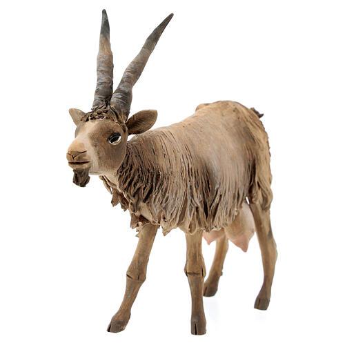 Cabra cabeza baja Belén 18 cm Angela Tripi terracota 2