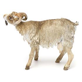 Chèvre broutant 18cm crèche Angela Tripi s4