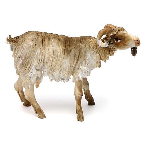 Chèvre broutant 18cm crèche Angela Tripi 1