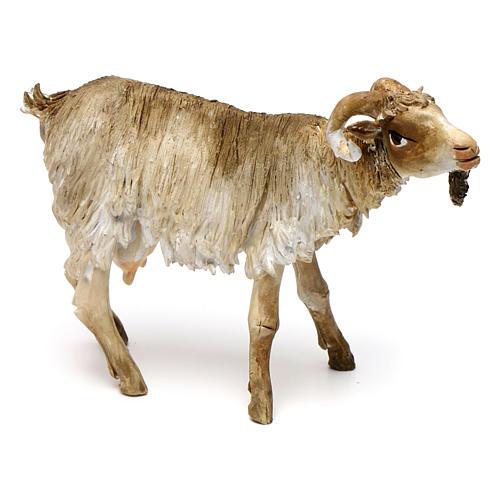 Chèvre broutant 18cm crèche Angela Tripi 3