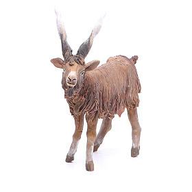 Terracotta goat 18cm Angela Tripi s1