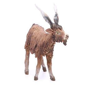 Terracotta goat 18cm Angela Tripi s4