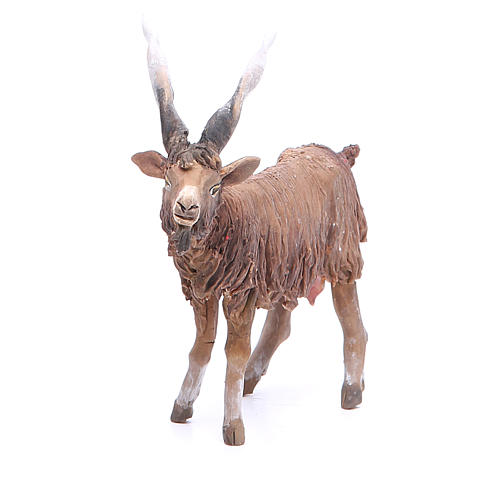 Terracotta goat 18cm Angela Tripi 1