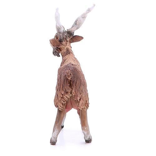 Terracotta goat 18cm Angela Tripi 3