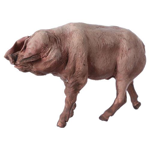 Pig in terracotta 18cm Angela Tripi 2