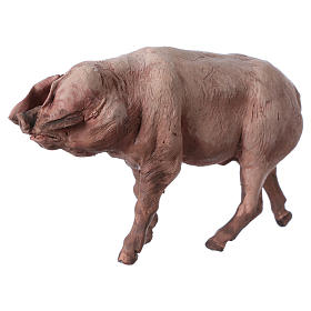 Pig in terracotta 18cm Angela Tripi s2