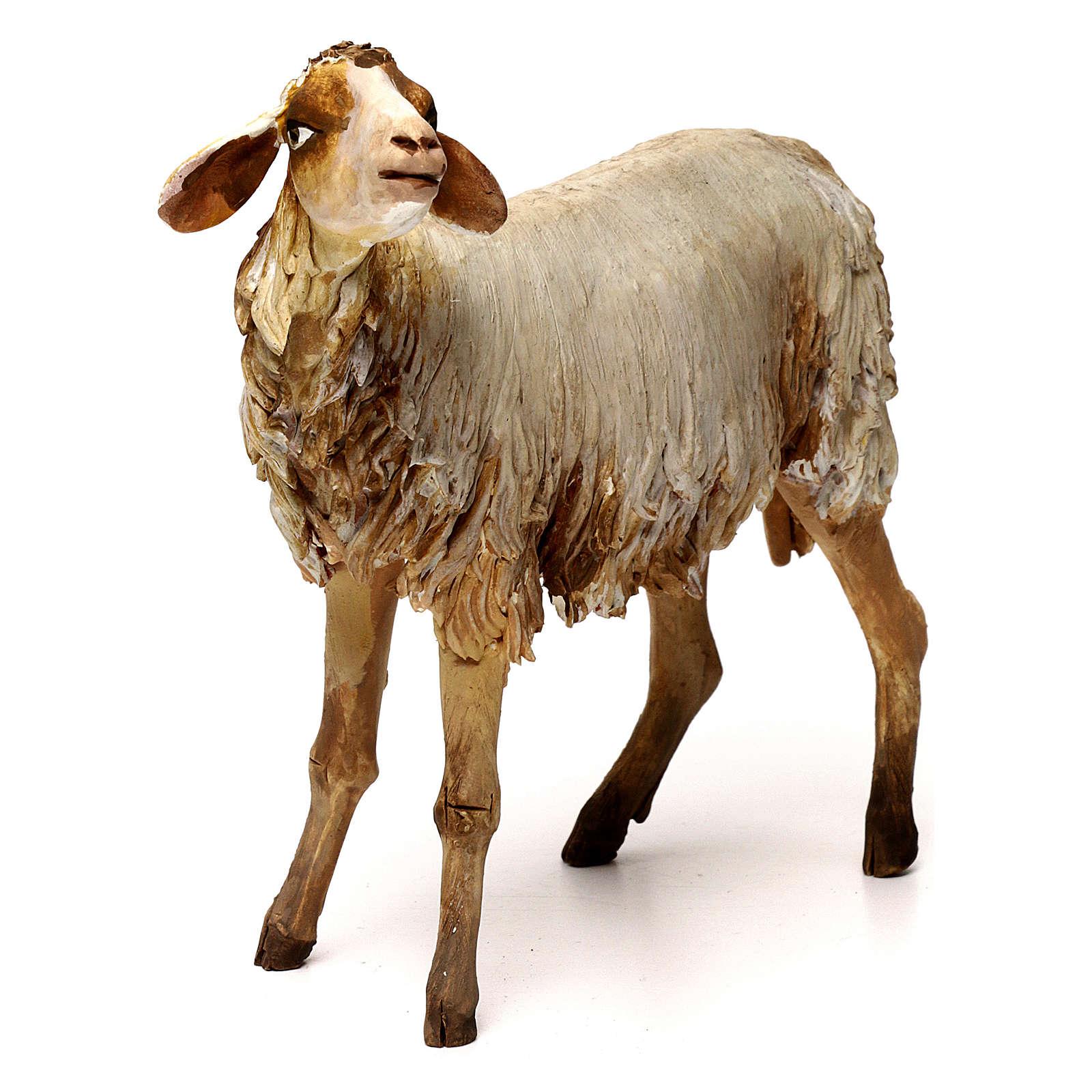Pecorella 30 cm presepe Angela Tripi 4