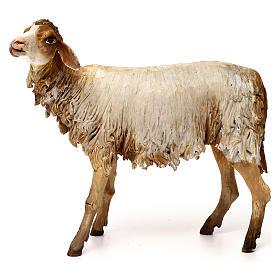 Pecorella 30 cm presepe Angela Tripi s1