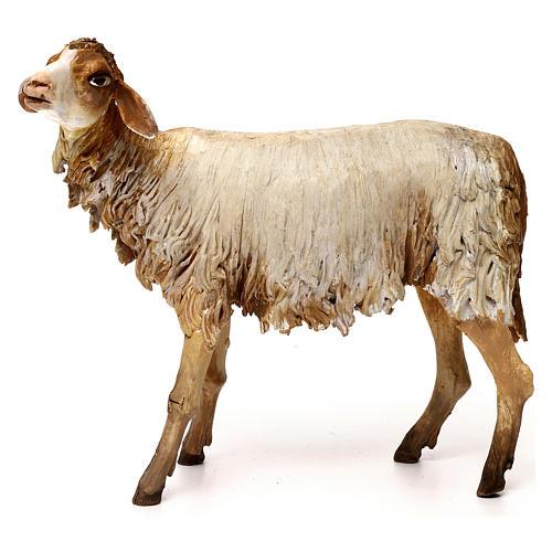 Pecorella 30 cm presepe Angela Tripi 1