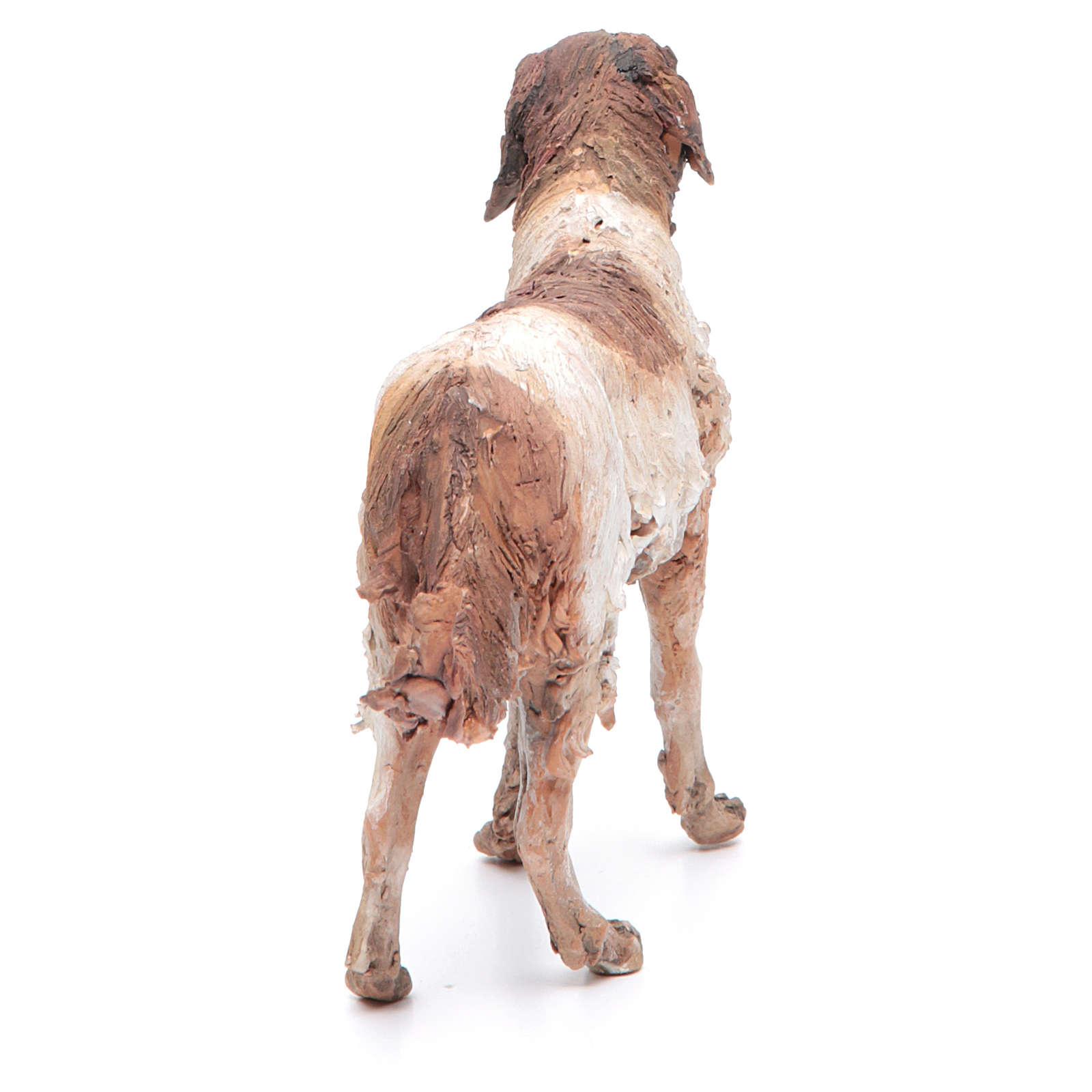 Cane 30 cm presepe terracotta Angela Tripi 4