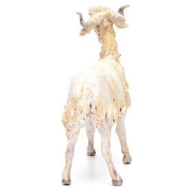 Mouton 30cm crèche Angela Tripi s3